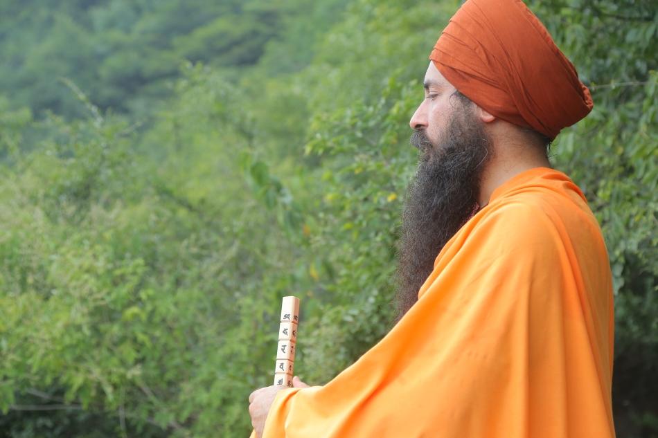 yogi.and.stick